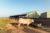 La vache de Laurent face à son nouveau hangars agricole
